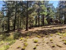6055 Big Horn Road, Manitou Springs, CO 80829