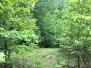 Lot 5 Emerald Pointe Circle, Rockwood, TN 37854