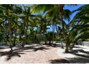 75161 Overseas Highway, Lower Matecumbe, FL 33036