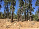 Lot 23 Mountain Pines, Show Low, AZ 85901
