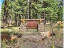 Tbd N Chickadee Trail, Flagstaff, AZ 86001