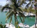 8 DARSHANA CONDOMINIUM, Bahama Reef Yacht and Country Club, Grand Bahama/Freeport