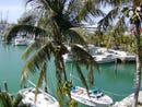 DARSHANA CONDOMINIUM, Bahama Reef Yacht and Country Club, Grand Bahama/Freeport