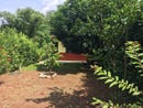 Casa Feliz: Adorable and Peaceful in Carrillo, Playa Carrillo, Guanacaste