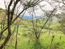 6.2 hectares of beautiful land, Vilcabamba, Loja